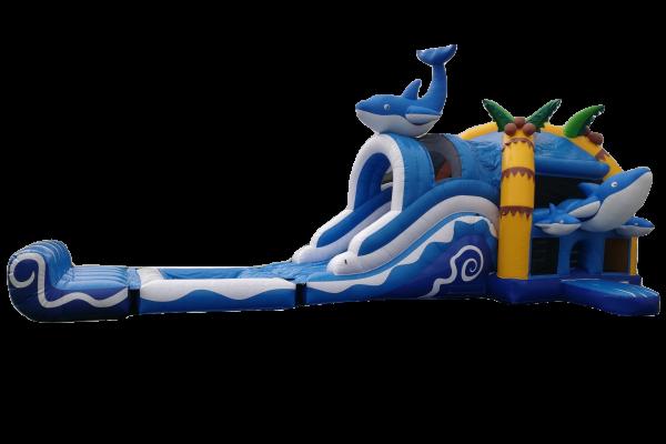 Dolfijn met bad